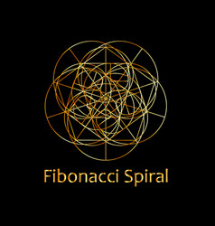Fibonacci spiral- the sacred geometry vector