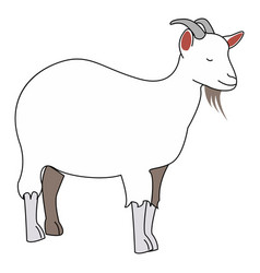 goat with horns on white background vector image