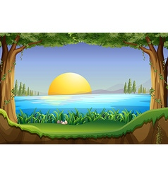 Scene with sunset at the lake vector image vector image