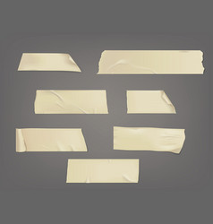 Set of different slices vector