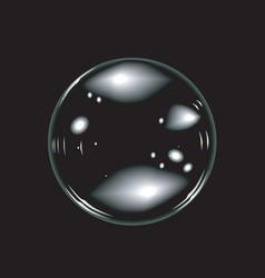 soap bubbles vector image vector image