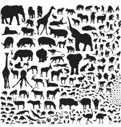 All animals africa vector