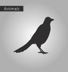 Black and white style icon of magpie vector