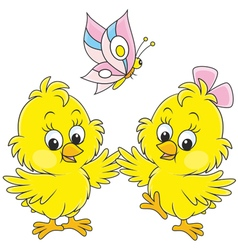 Easter chicks vector image