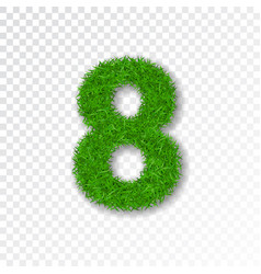 Grass number eight green number 8 isolated on vector