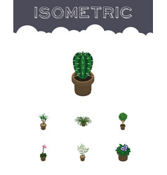Isometric plant set of tree houseplant flowerpot vector