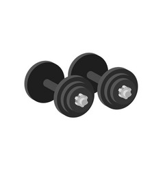 pair of heavy dumbbells for exercise or muscle vector image