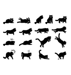 Persian cat poses postures emotions and actions vector