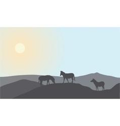 Silhouette of family zebra vector image
