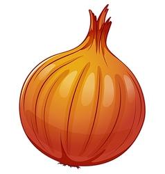 An onion vector