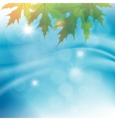 autumn leaves on a background of water vector image