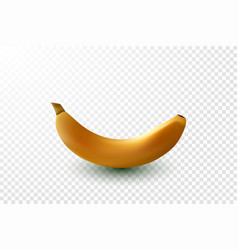 detailed shiny yellow banana vector image