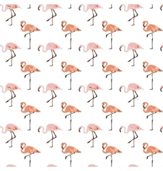 Flamingo bird seamless pattern background vector