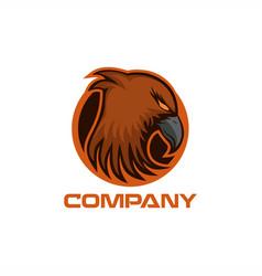 hawk logo vector image