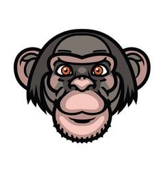 monkey head vector image