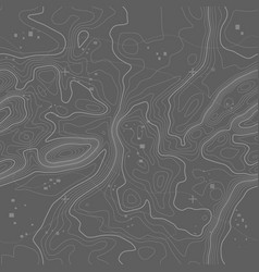 seamless topographic map background line vector image