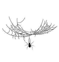 set spider web different shapes with black vector image