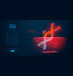 abstract silhouette polygonal dna vector image