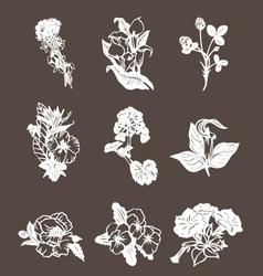 Hand drawn flower design elements vector