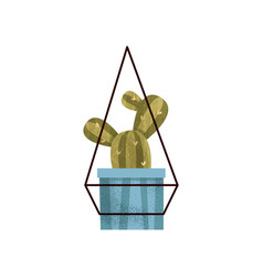 Hanging cactus house plant in a pot elegant home vector