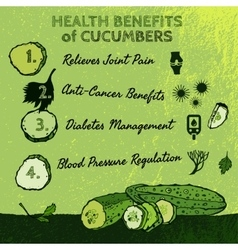 Cucambers Health Benefits 01 A vector image vector image