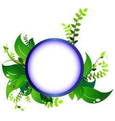 frame eco nature ladybug vector image