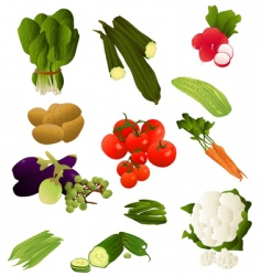 indian vegetables vector image vector image