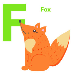 new babies alphabet with letter f fox flat design vector image