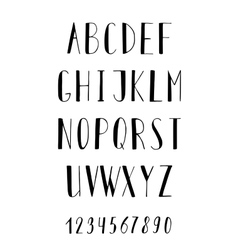 Handwritten alphabet and numbers vector image vector image