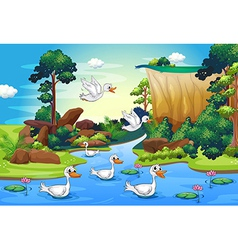 A group of ducks at the river in the forest vector