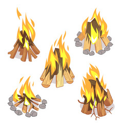 campfire outdoor bonfire with burned logs cartoon vector image