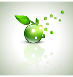 eco green design vector image