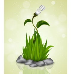 green grass sprouting from the Earth vector image