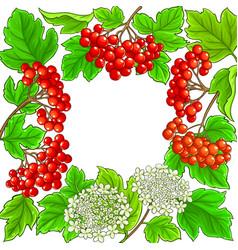 guelder rose frame on white background vector image