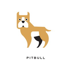 cartoon pitbull character isolated on white vector image