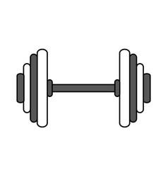 dumbbells sport gym flat vector image