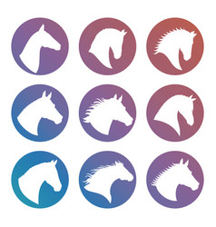 horse heads silhouettes icons set vector image