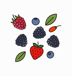 berry blend logo raspberry blueberry and goji vector image