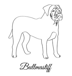 Bullmastiff dog coloring vector