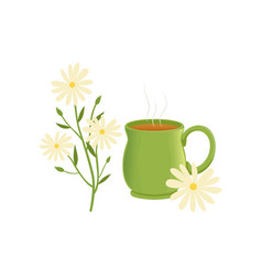 herbal tea in a green cup with chamomile remedy vector image
