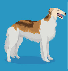 Russian hunting sighthound vector