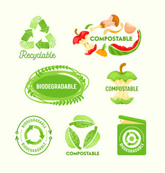 Set environmental labels recyclable triangle vector