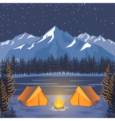 Nature adventure poster night landscape with vector image vector image