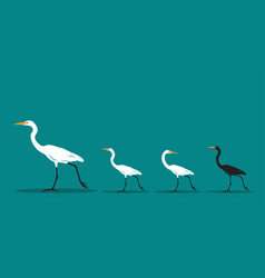 walking bird on blue background difference vector image
