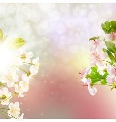 Blooming apple tree against the sky EPS 10 vector