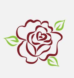 rose flower line art vector image