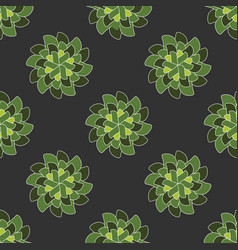 Sacred mandala pattern vector