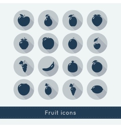 Set of fruit icons vector image