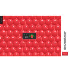 food patterns fruit raspberry vector image