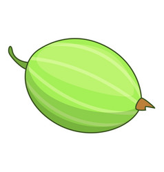 Gooseberry icon cartoon style vector